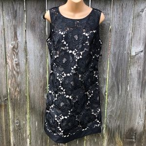 WHBM Sz 8 Black Floral Lace Overlay Dress NWOT